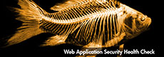 Web Application Security Health Check